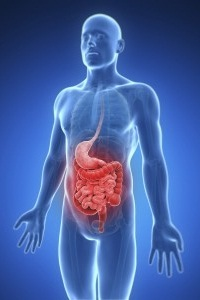 What You Should Know About Irritable Bowel Syndrome?