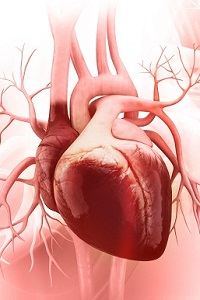 What causes fluid around the heart?