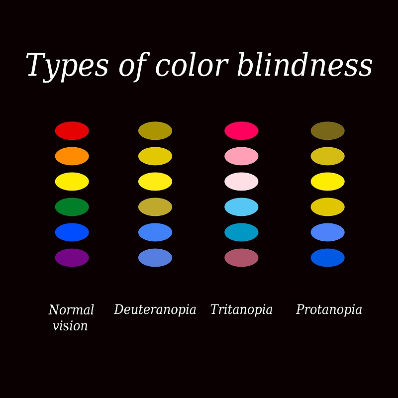 Different types of color blindness and color perception