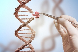 Gene Therapy for Duchenne Muscular Dystrophy