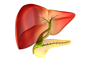 Can you Get Gallstones without a Gallbladder?