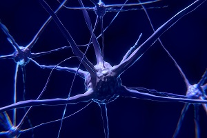 Pinched Nerve (Compressed Nerve): Causes, Symptoms, Diagnosis, Treatment, Prevention