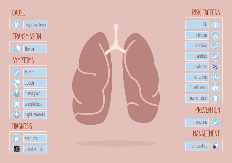 Main symptoms and risk factors of tuberculosis