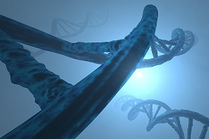 Genetic Treatment of Erectile Dysfunction