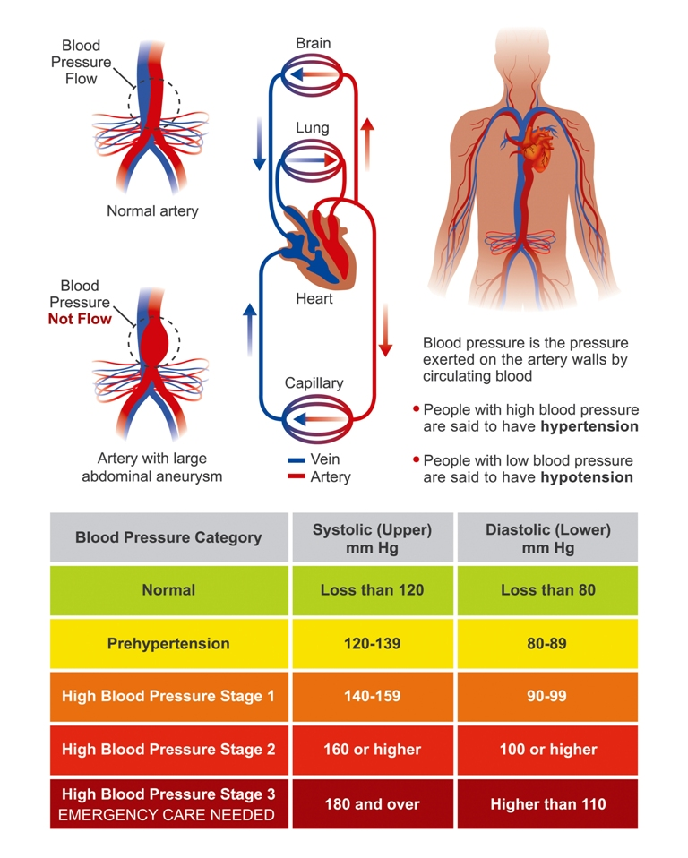Human blood pressure readings