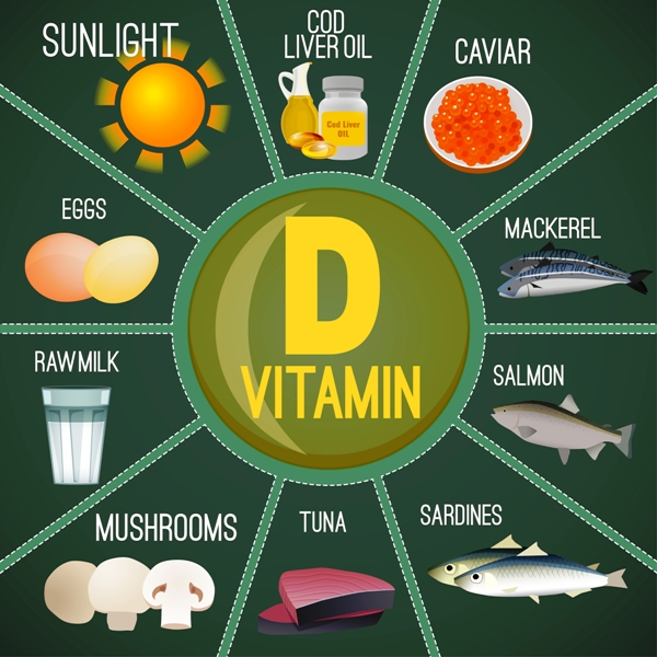 High vitamin D sources
