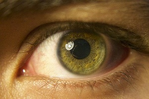 Retina Problems and Diseases