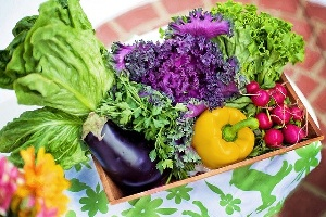 Irritable Bowel Syndrome Diet (IBS diet)