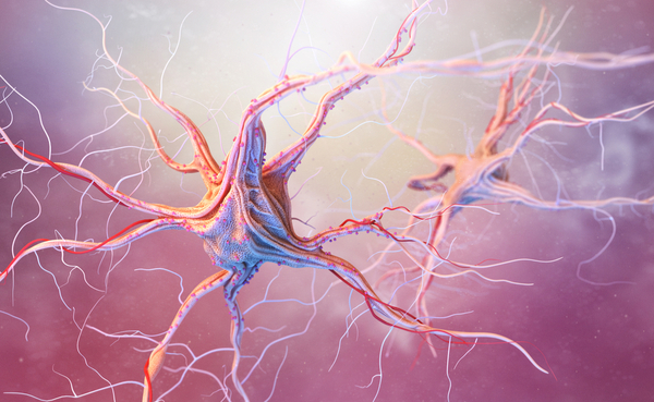 what you should know about epilepsy